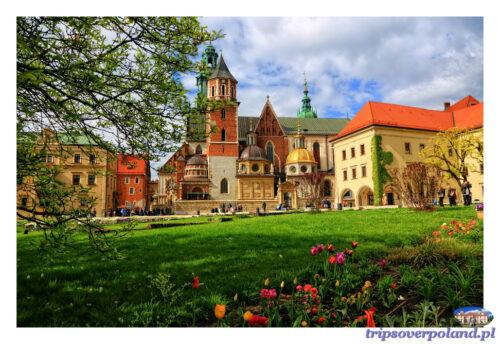 Kraków - Wawel'2014