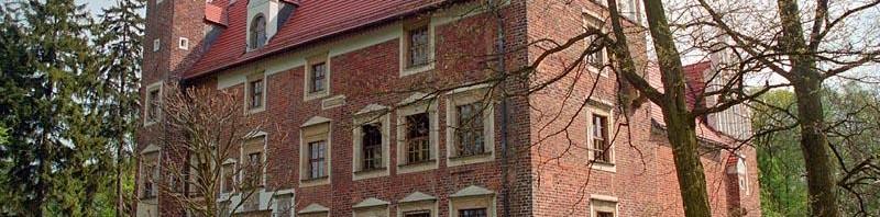 Najpiękniej położone polskie zamki (19) – Wojnowice