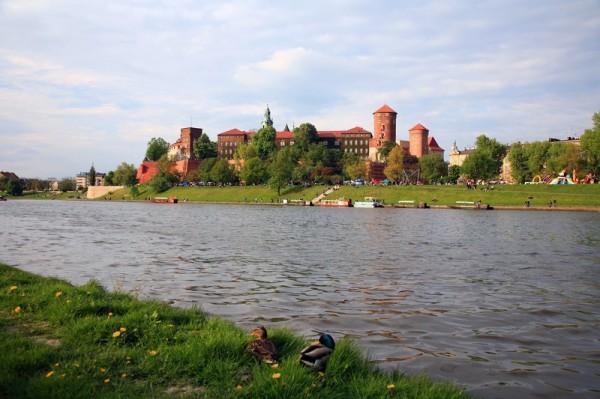 Kraków - Wawel'2008