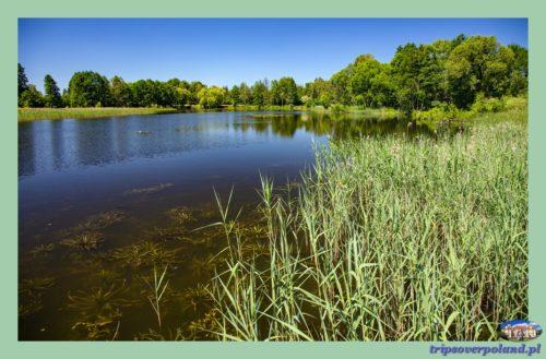 Uroczysko Zaborek - zbiornik wodny